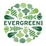 Evergreen Salads